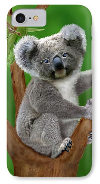 Blue-eyed Baby Koala IPhone Case