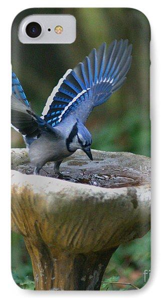 Blue Jay Bath IPhone Case