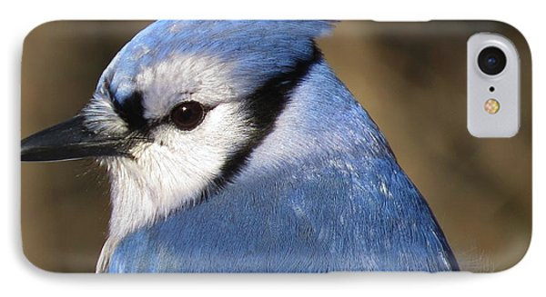 Blue Jay Profile IPhone Case