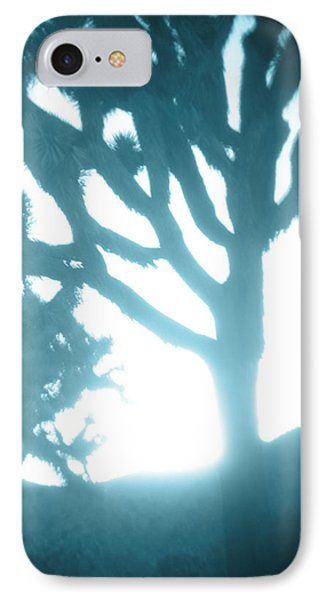 Blue Joshua Trees In Pinhole IPhone Case