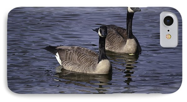 Blue Lake Geese IPhone Case