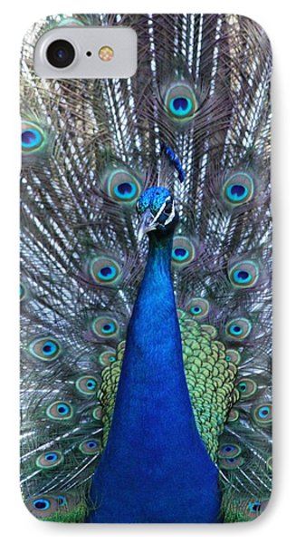Blue Pearl Of Nature IPhone Case