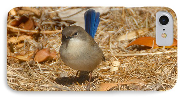 Blue Wren IPhone Case