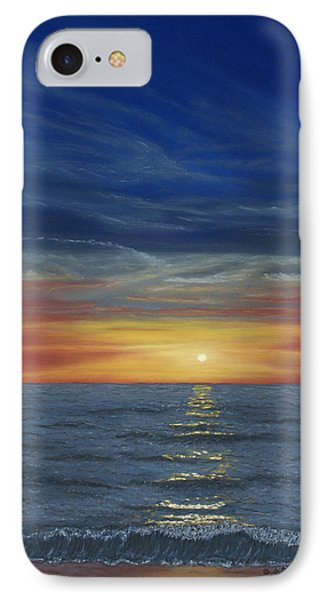 Blueberry Beach Sunset IPhone Case