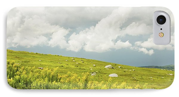 Blueberry Field And Goldenrod With Dramatic Sky In Maine IPhone Case