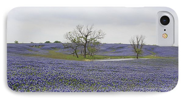 Bluebonnet Oasis IPhone Case