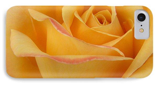 Blushing Yellow Rose IPhone Case