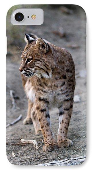 Bobcat IPhone Case