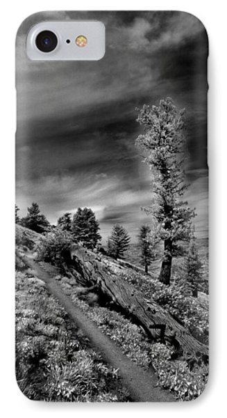 Bogus Basin Trail IPhone Case
