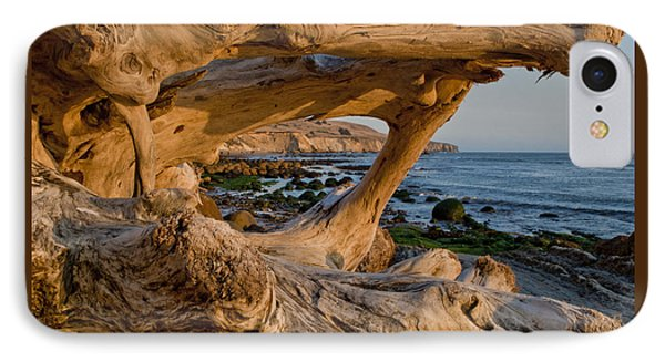 Bowling Ball Beach Framed In Driftwood IPhone Case