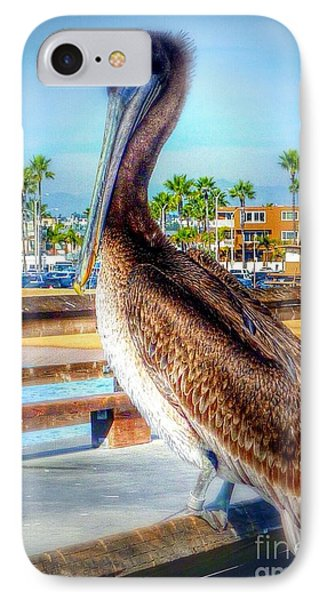 Brief Pelican Encounter  IPhone Case