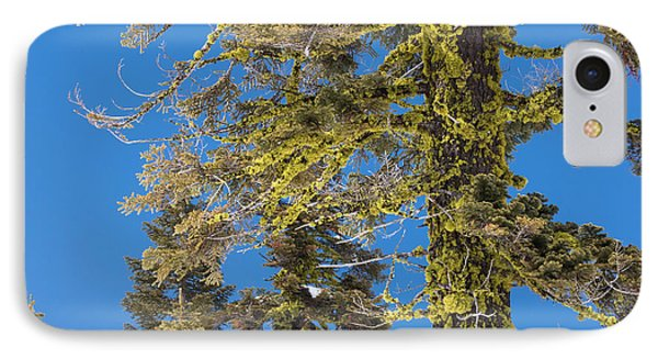 Bright Lichen IPhone Case