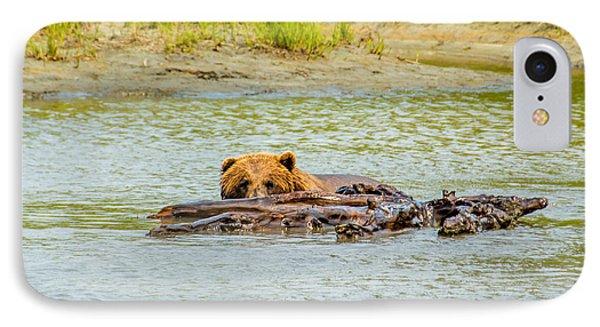Brown Bear In Alaska IPhone Case