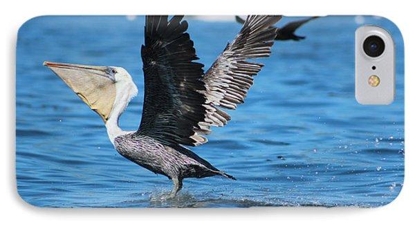 Brown Pelican Landing IPhone Case