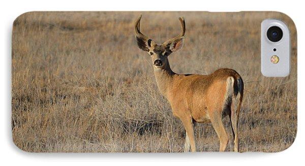 Buck 4 IPhone Case