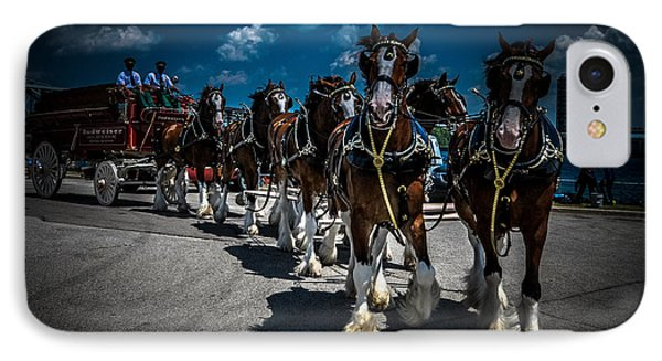 Budweiser Clydesdales IPhone Case