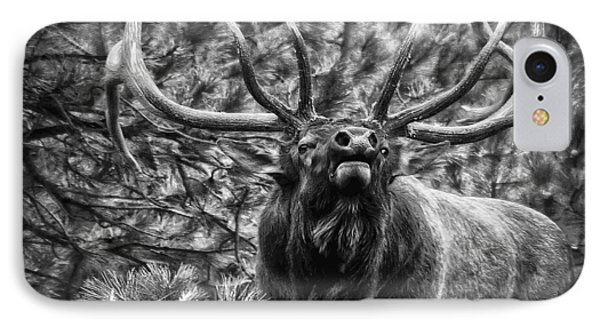 Bull Elk Bugling Black And White IPhone Case