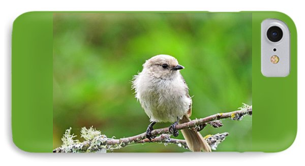 Bushtit IPhone Case