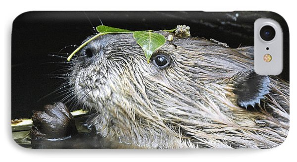 Busy Beaver IPhone Case