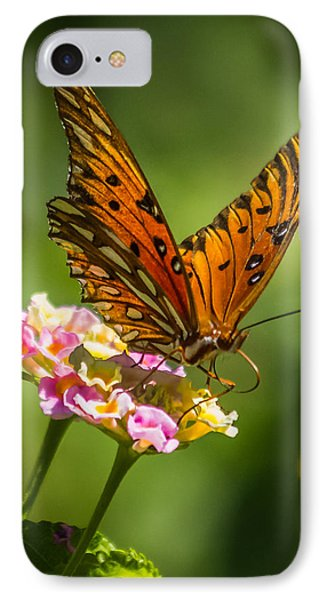 Busy Butterfly IPhone Case
