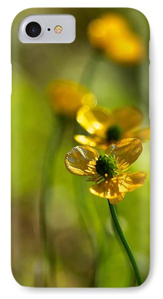 Buttercups I IPhone Case