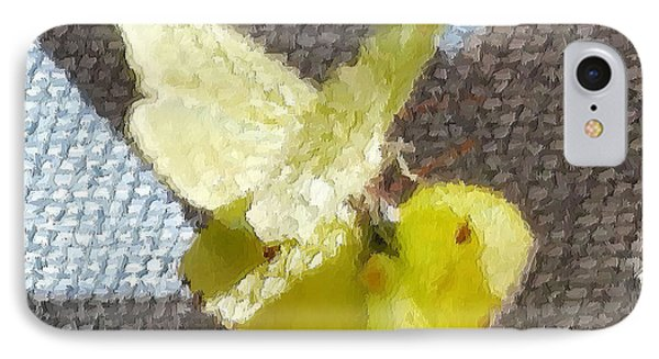 Sulfur Butterflies Mating IPhone Case
