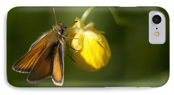 Butterfly And Buttercup  IPhone Case