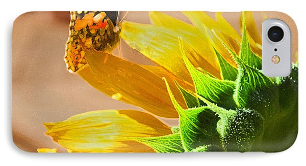 Butterfly And Sunflower Meeting IPhone Case