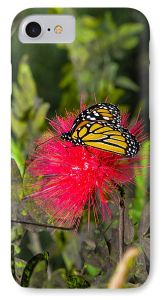Butterfly In Flower Bush IPhone Case