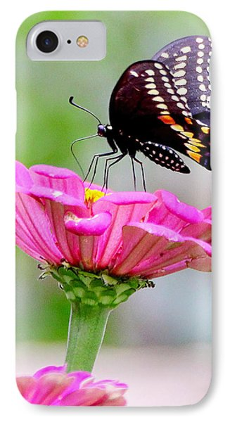 Butterfly On Pink Flower IPhone Case