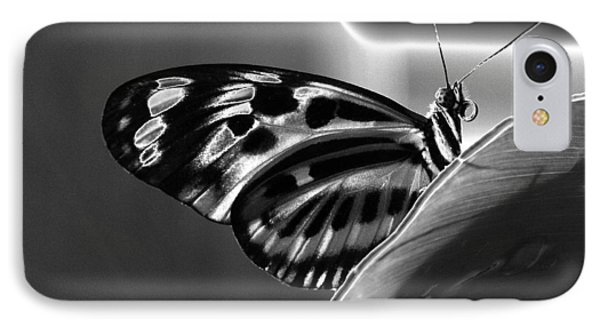 Butterfly Solarized IPhone Case