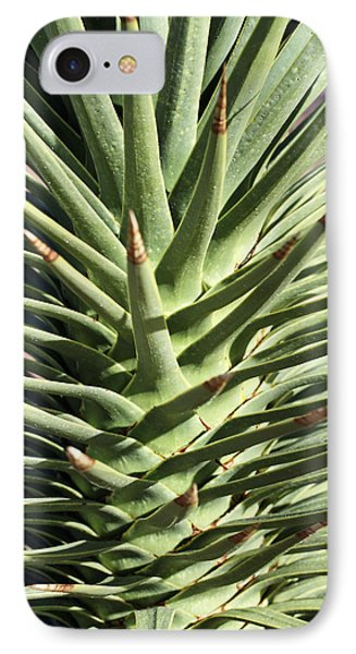 Cactus 2 IPhone Case