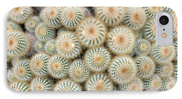 Cactus 35 IPhone Case