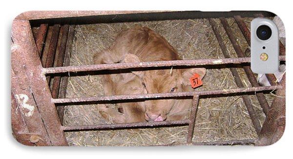 Calf IPhone Case