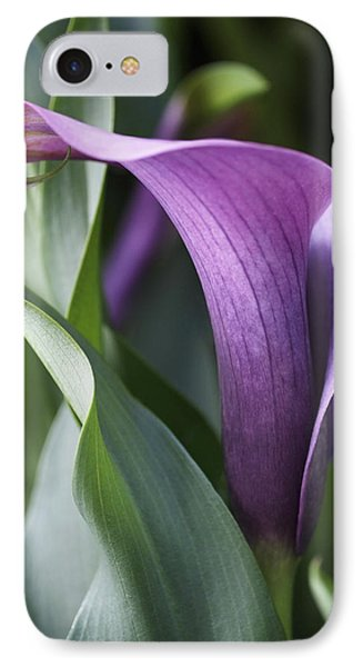 Lily iPhone 8 Case - Calla Lily In Purple Ombre by Rona Black
