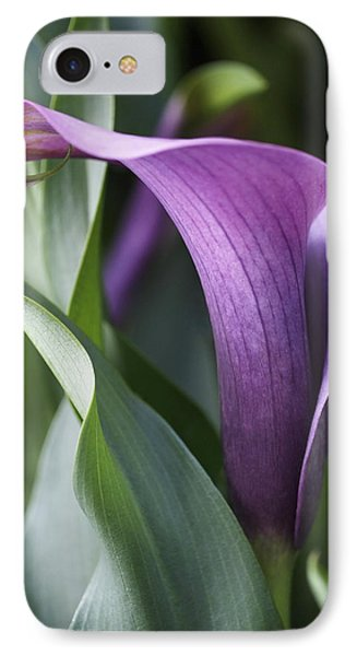 Calla Lily In Purple Ombre IPhone Case