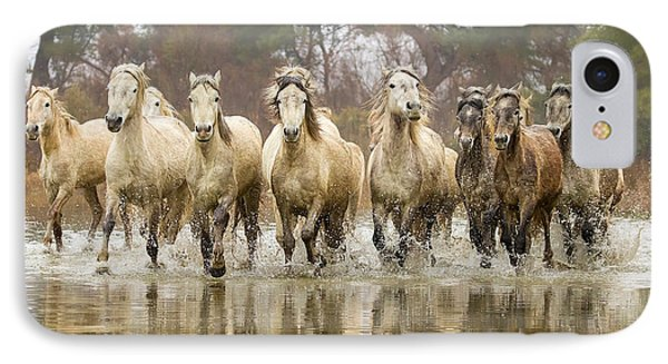 Camargue Horses At The Gallop IPhone Case