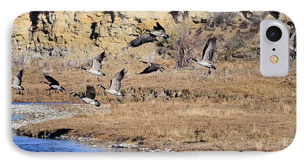 Canada Geese Along The Green River IPhone Case