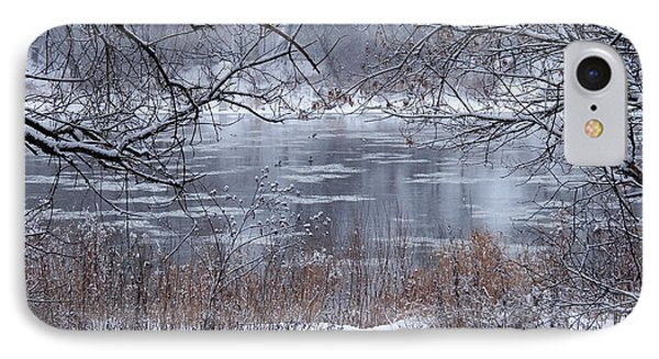 Canada Geese In The Winter II IPhone Case