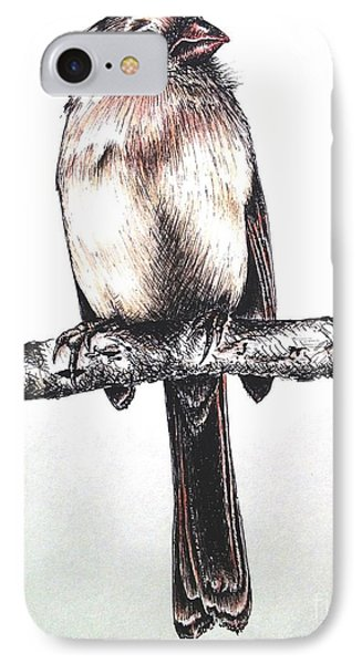 Cardinal Female IPhone Case