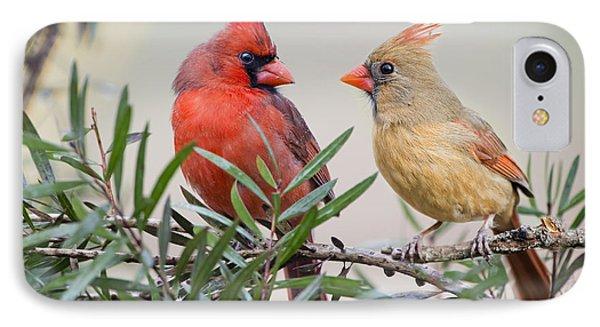 Cardinal Mates IPhone Case