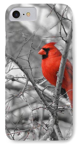 Cardinal Of Hope 002sc IPhone Case