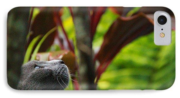 Cat Hunting IPhone Case