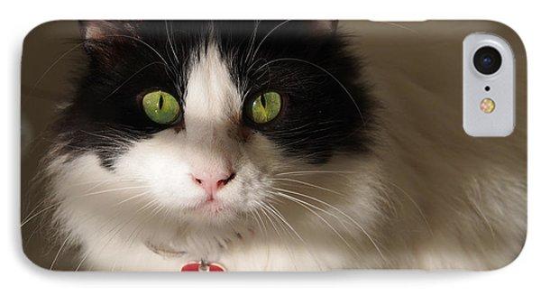 Cat's Eye IPhone Case