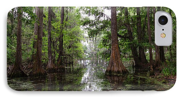 Charleston Swamp IPhone Case