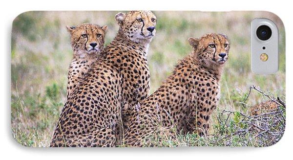 Cheetah Family IPhone Case
