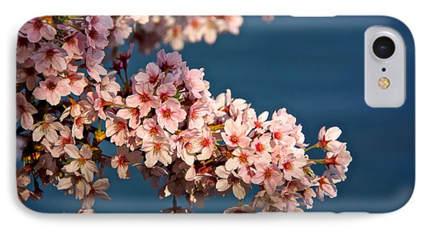 Cherry Blossoms On The Basin IPhone Case