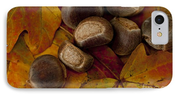 Chestnuts And Fall Leaves IPhone Case
