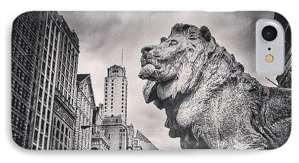 Art Institute Of Chicago Lion Picture IPhone Case