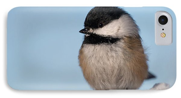 Chickadee Up Close IPhone Case